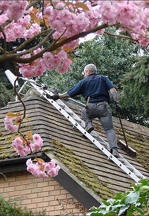 Our staff cleaning the moss from a roof in Swaythling near Southampton